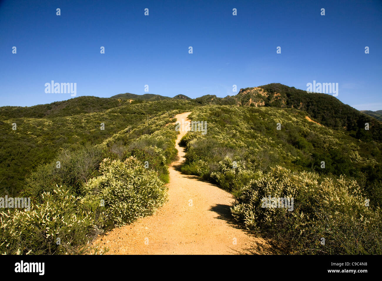 CALIFORNIA - The Backbone trail traversing chaparral covered hillsides above its terminus at Will Rogers State Historic - Stock Image