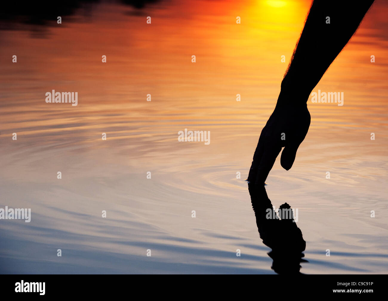 Hand touching water causing ripple at sunrise silhouette. India - Stock Image