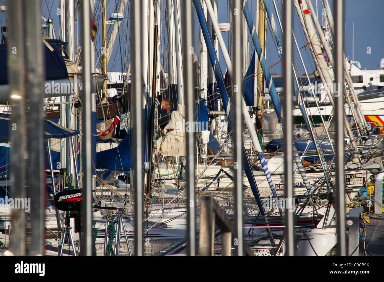 Cluster of yachts behind railings at marina - Stock Image