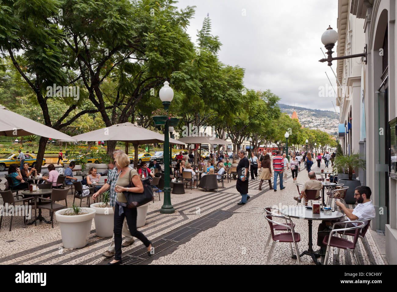 Street in Funchal, Madeira, Portugal, Europe - Stock Image