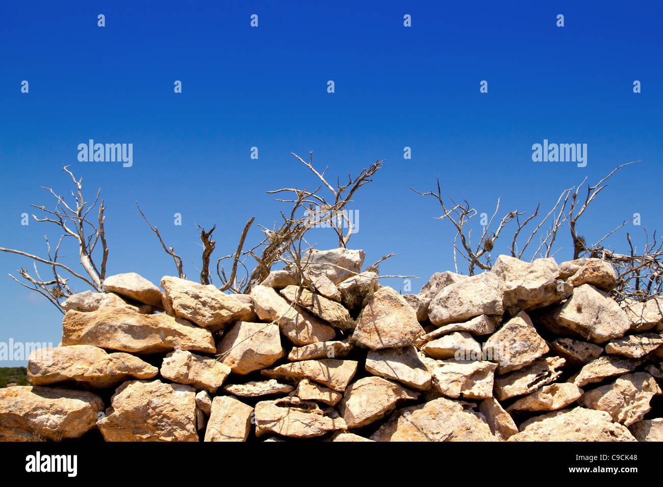 Mediterranean dried branches and masonry wall as Balearic symbol - Stock Image