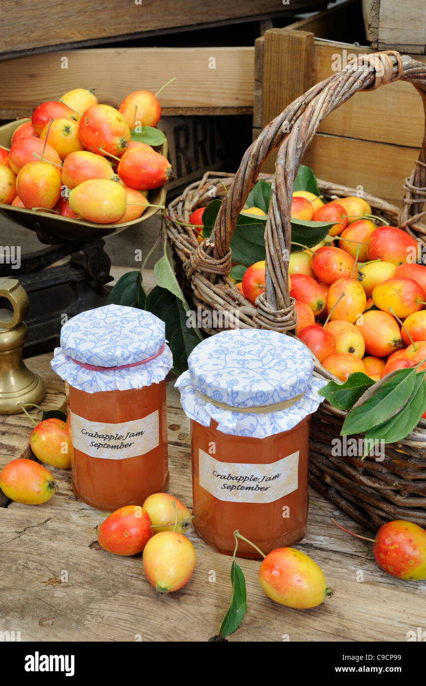 Country Jam making, Still life with Jars of home made crab apple jam and crab apples, Norfolk, England, September - Stock Image