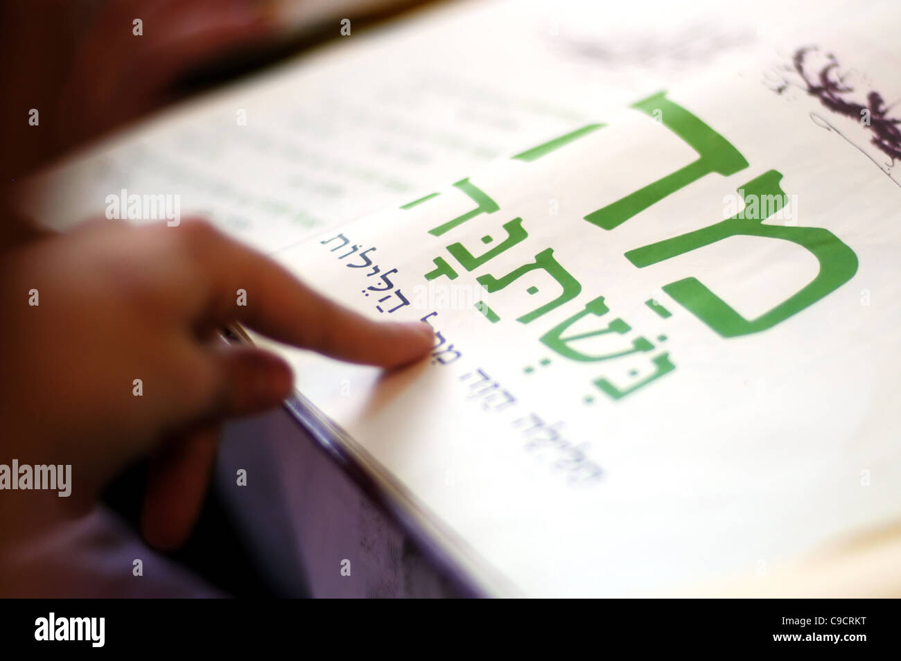 A woman reads the Haggadah (traditional text) during blessings for the Jewish holiday of Passover Dinner - Stock Image
