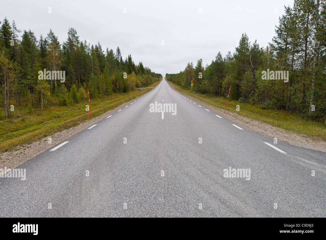 Straight road disappearing in the horizon. - Stock Image