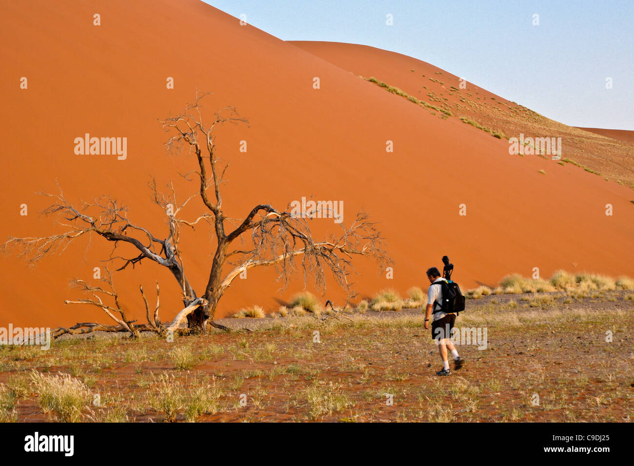 Photographer at Dune 45, Namib-Naukluft Park, Namibia Stock Photo