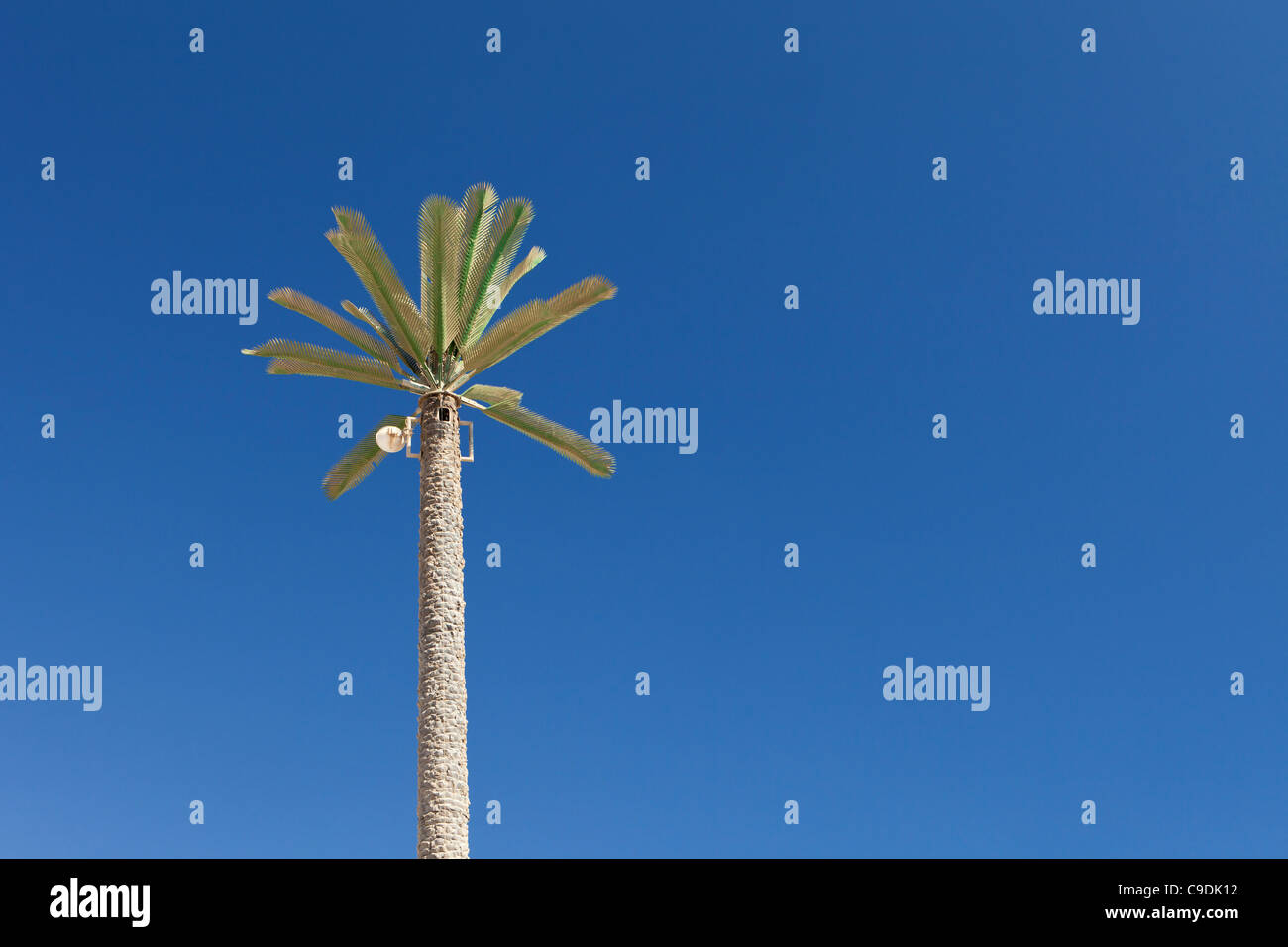 A mobile phone mast concealed as a palm tree in Egypt - Stock Image