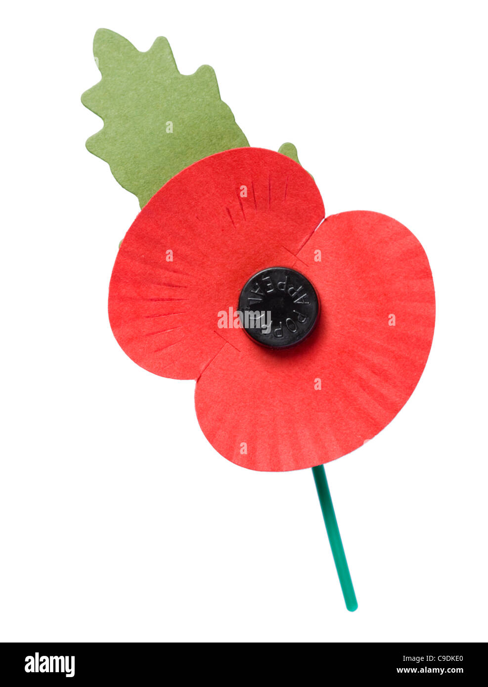 poppy appeal - photo #14