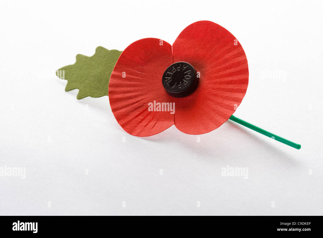Royal British Legion poppy for November Poppy Appeal. - Stock Image