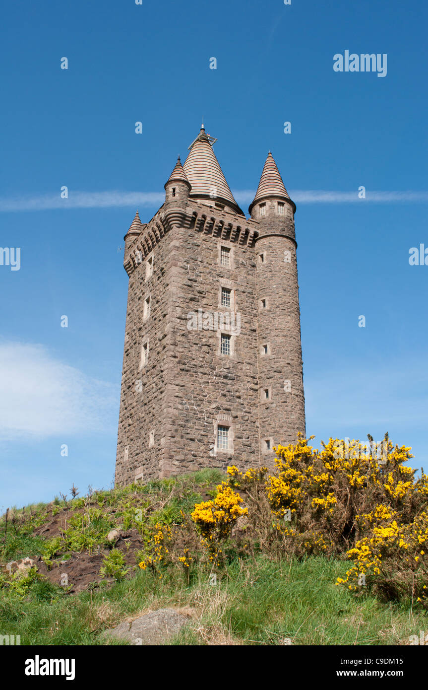 Scrabo Tower, Newtownards - Stock Image