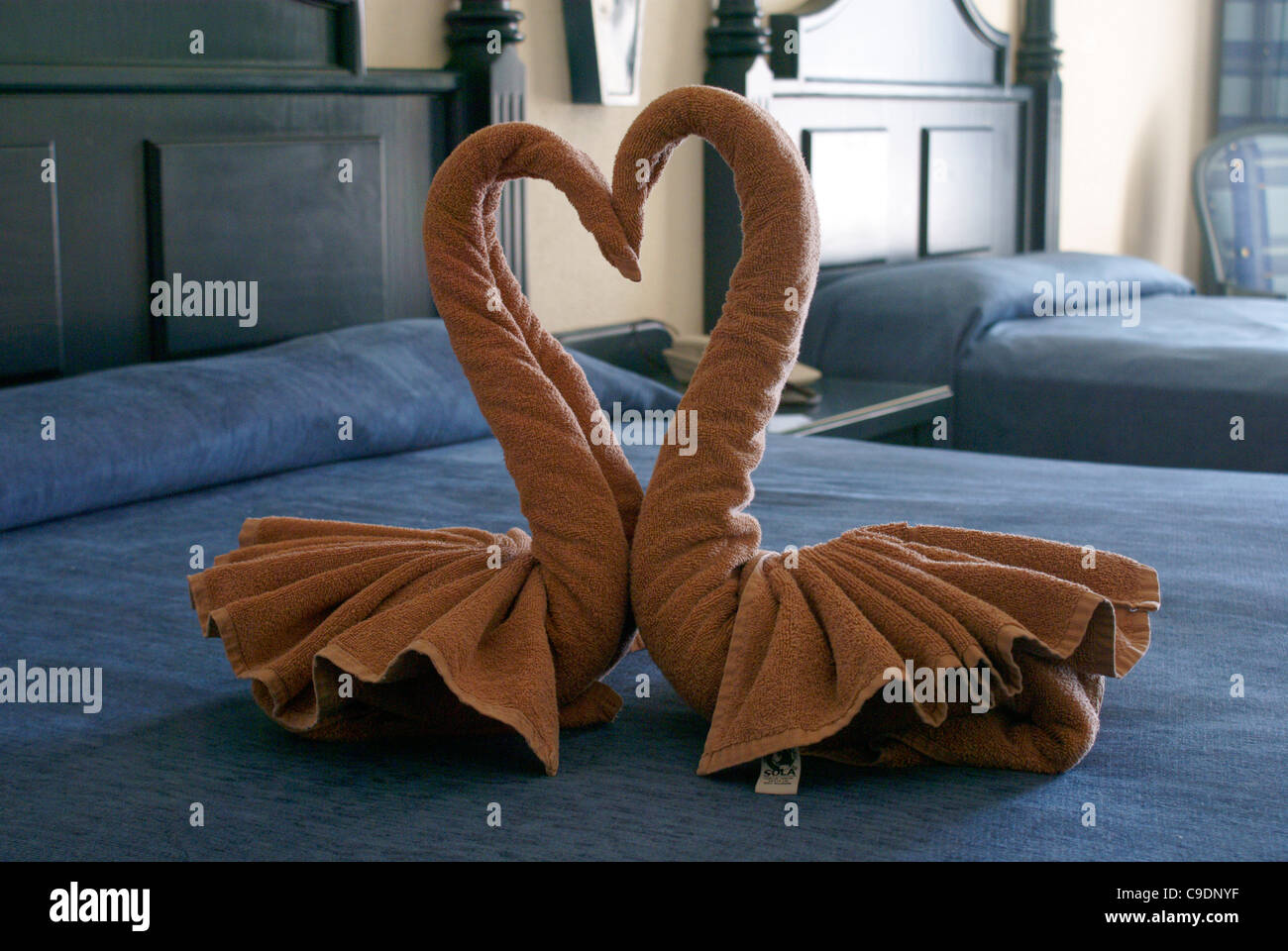 Kissing swans towel origami on the bed in a luxury resort hotel room, Mazatlan, Sinaloa, Mexico - Stock Image