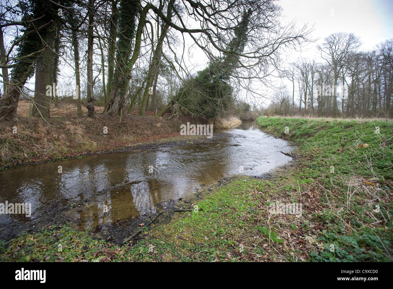 The River Glen in South Lincolnshire showing low water levels due to the drought. 29 Feb, 2012. Stock Photo