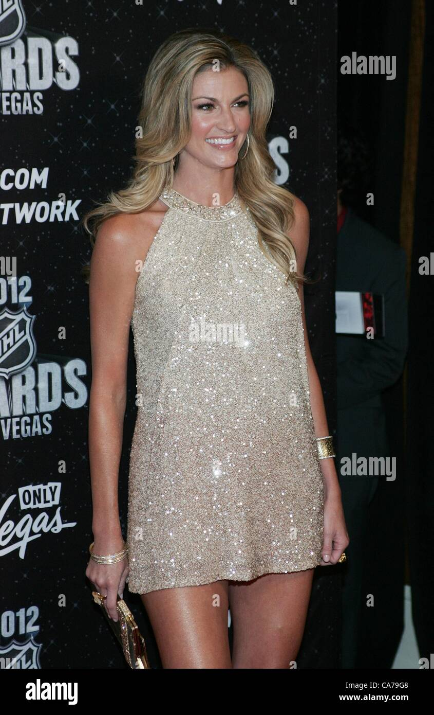 Erin Andrews In Attendance For 2012 National Hockey League Nhl Stock
