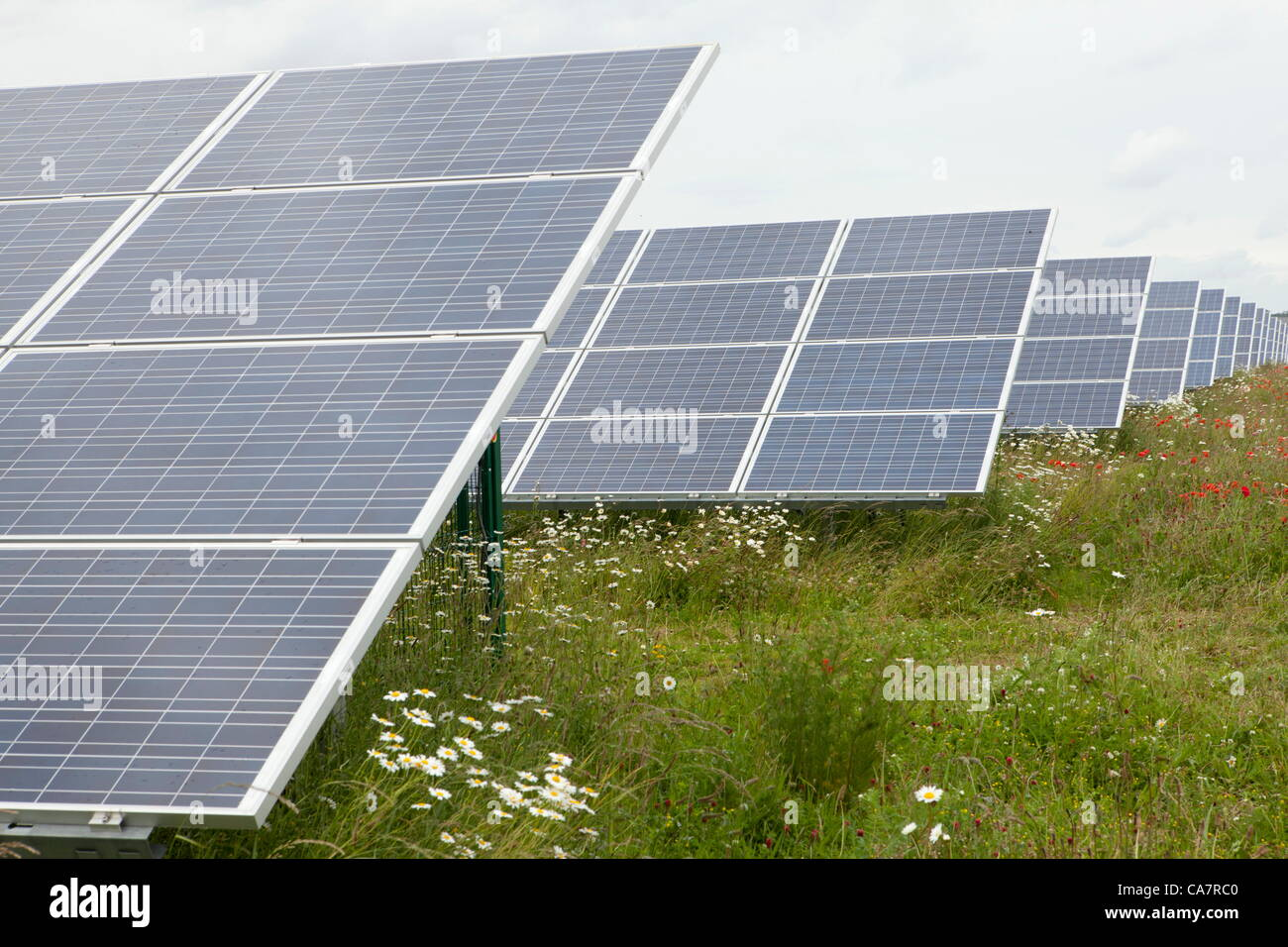 Westmill. Watchfield nr Swindon, UK. Saturday 23rd June 2012. Westmill energy farm on the day of its share offer - Stock Image