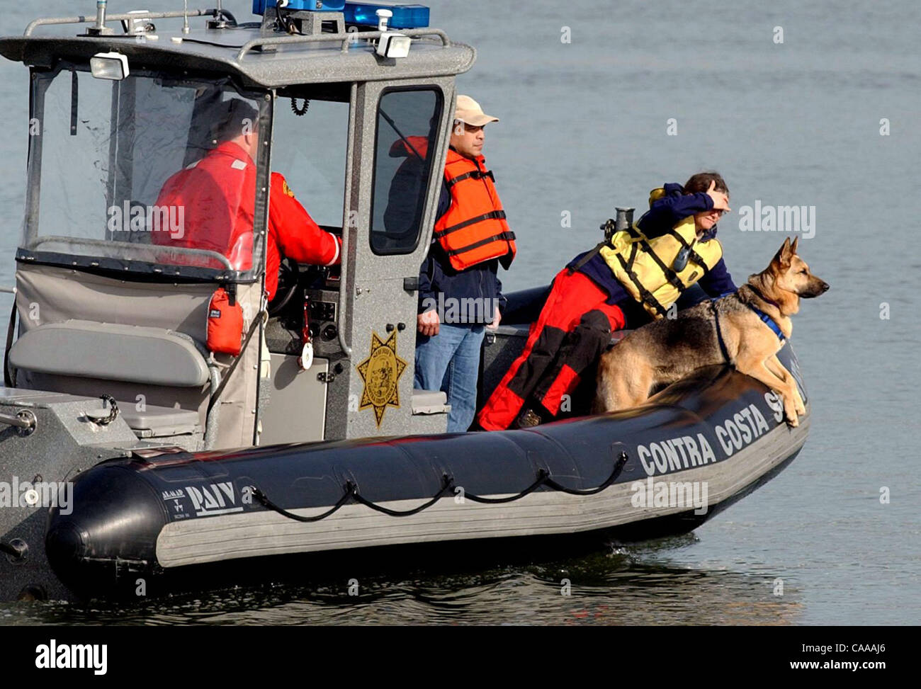 Aboard a Contra Costa County Sheriff's boat, CARDA dog handler Song Kowbell watches her Search and Rescue dog  Zippy Stock Photo