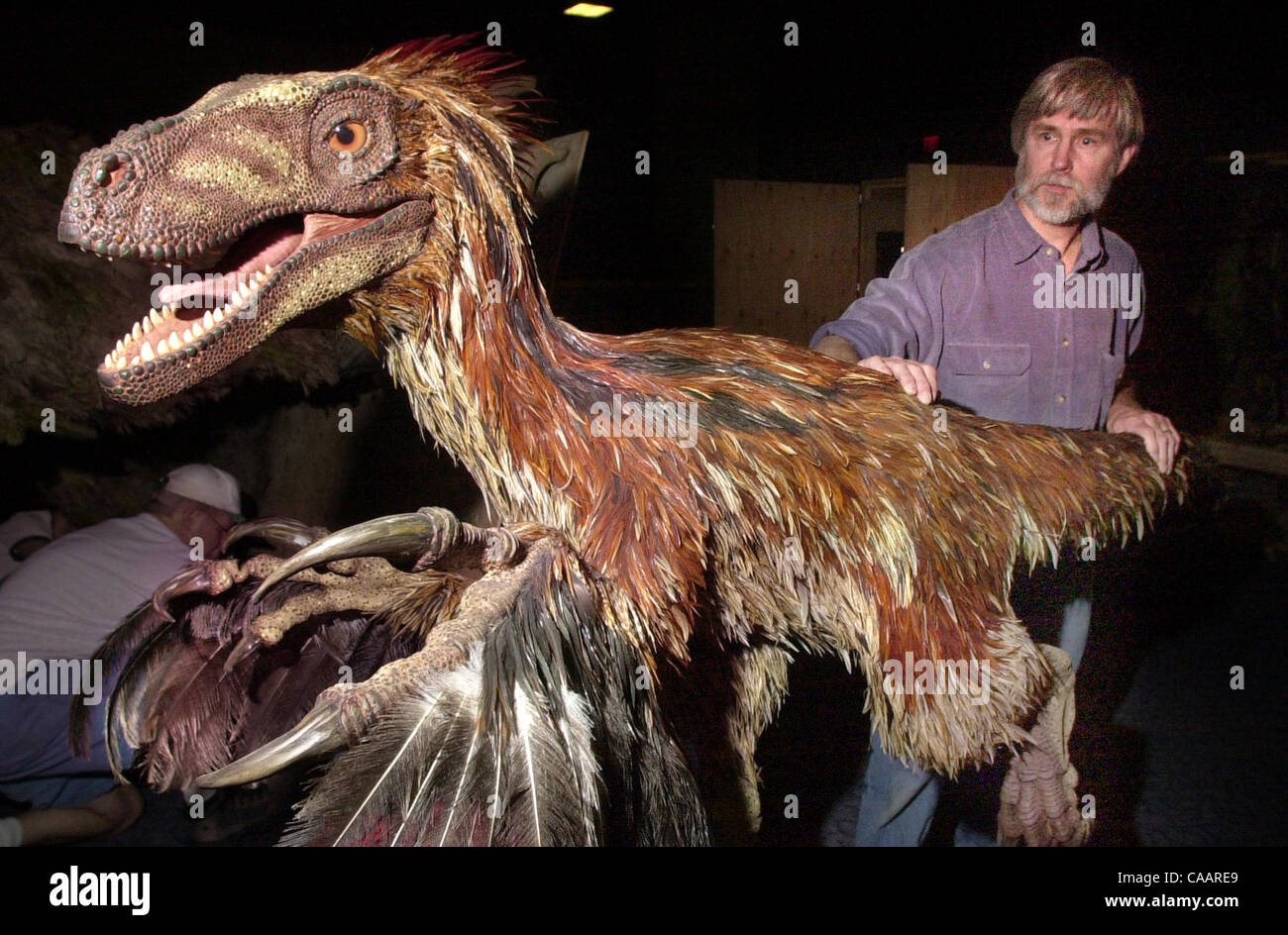 In the San Diego Natural History Museum's basement, the Legler Benbough Exhibit Hall, noted dinosaur sculptor - Stock Image