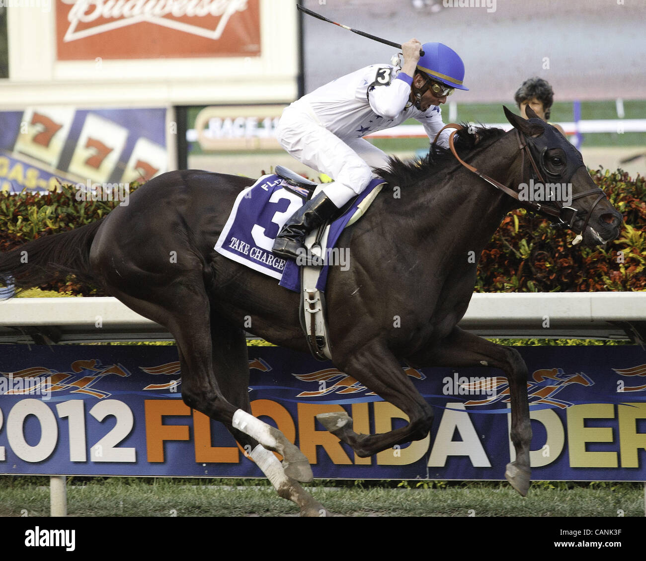 March 31, 2012 - Hallandale Beach, Florida, U.S. - Take Charge Indy with Calvin Borel up wins the Florida Derby - Stock Image
