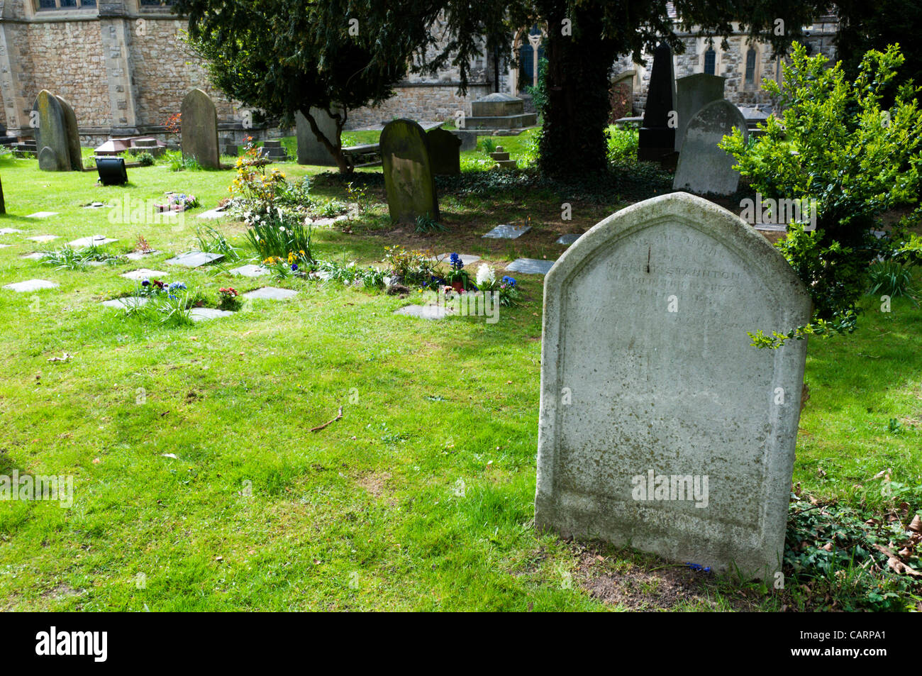 BECKENHAM, UK, 15 Apr 2012. 'Harriet' by Elizabeth Jenkins to be published on 19 April 2012.  Originally - Stock Image
