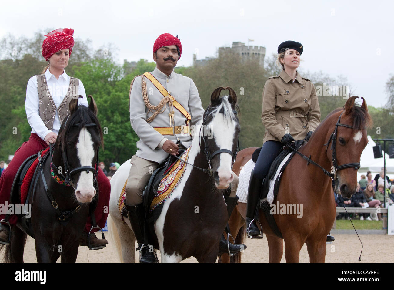 Thursday 10th May 2012 Marwari Horses From India Being Dispalyed At Stock Photo Alamy