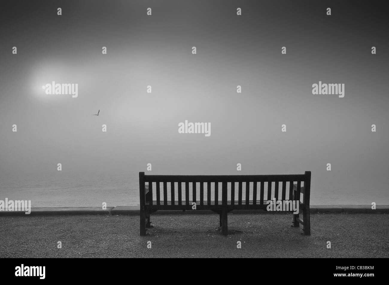 An empty bench and a lone gull lit by a diffuse sun over a foggy River Humber, Northern England. Stock Photo