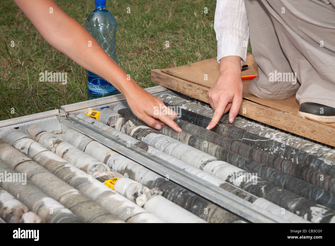 Female geologists inspecting and logging NQ diamond drill core for gold mineralisation - Stock Image