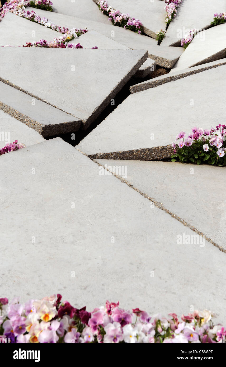 Uneven concrete paving slabs with pink flowers - Stock Image