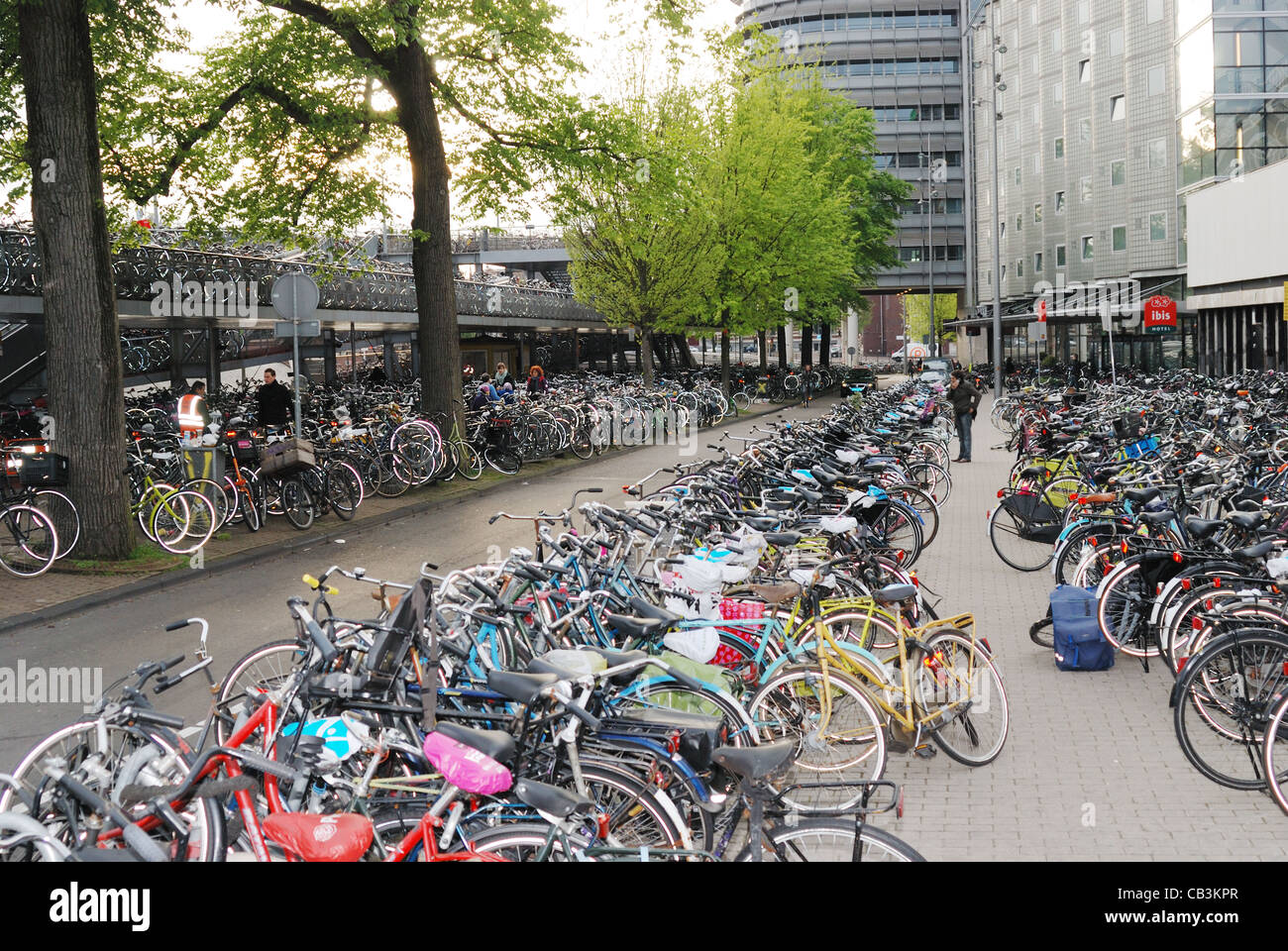 Bicycle parking lot in Amsterdam - Stock Image