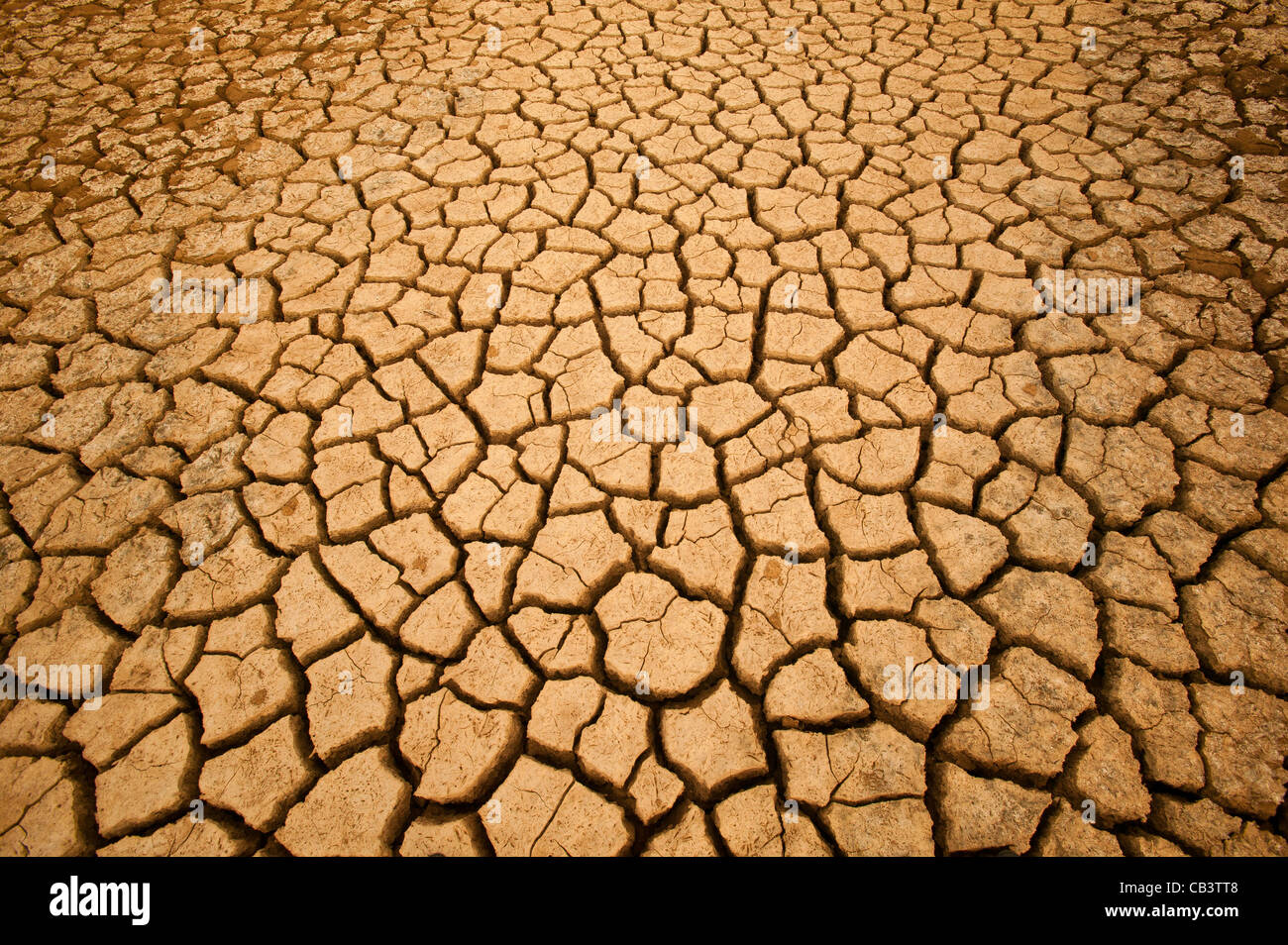 Cracked soil in Sarigua National park (desert) in the Herrera province, Republic of Panama. - Stock Image
