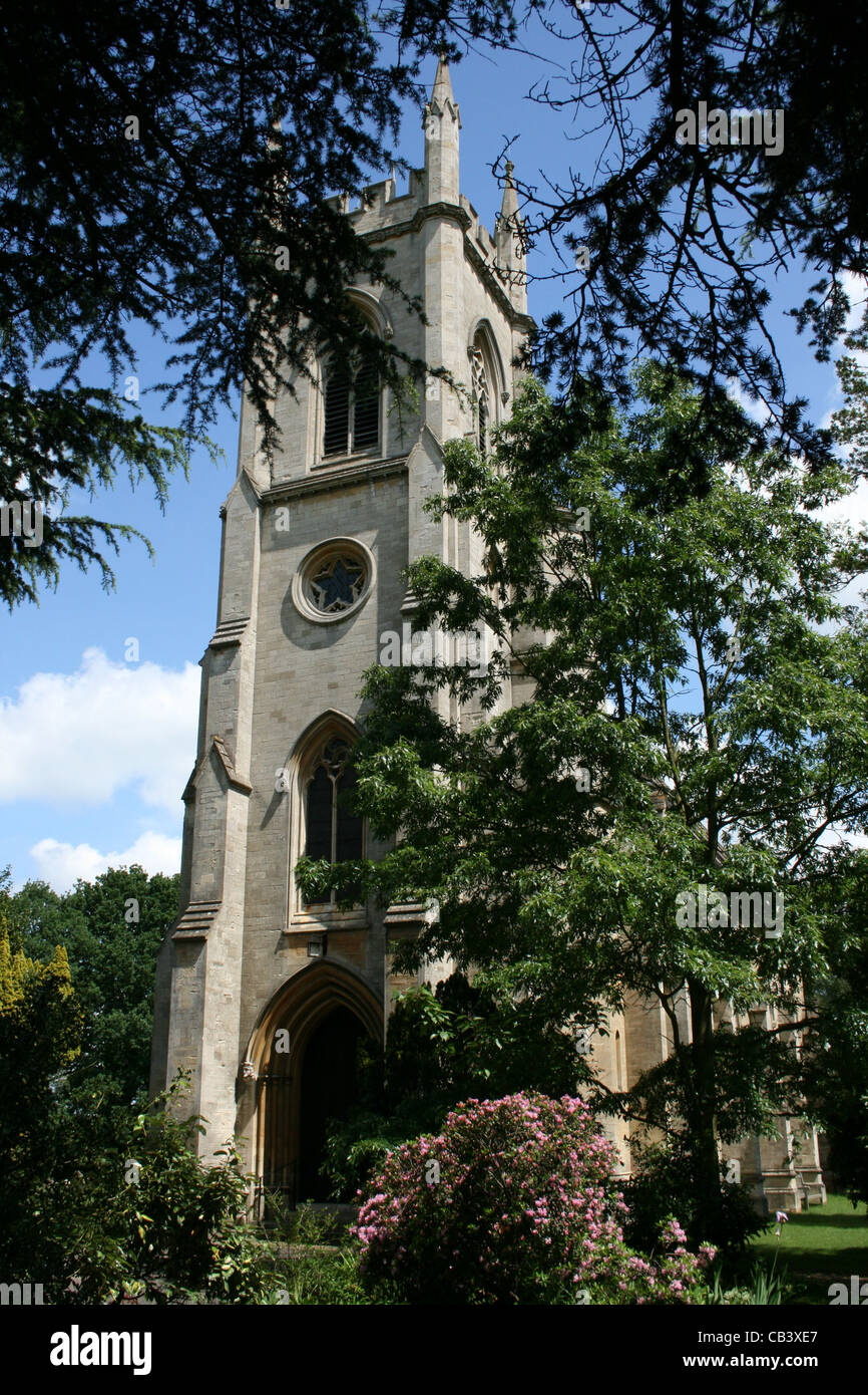 St. Catherine's Church fir trees in the foreground. Sindlesham Berkshire. - Stock Image