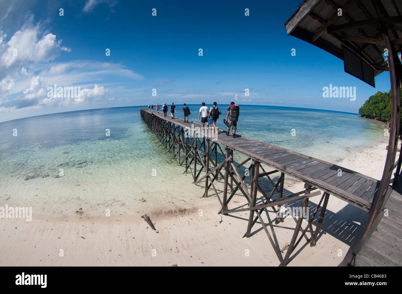 The welcoming pier at Jellyfish Lake, Jellyfish Lake, Kakaban Island, Berau, Kalimantan, Borneo, Indonesia, Pacific - Stock Image