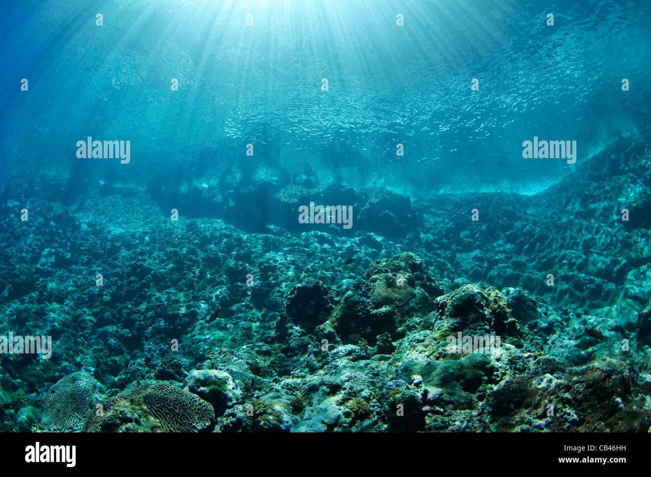 Sunrays or Gods rays slicing through crystal clear water, Gunung Api island, Banda Sea, Eastern Indonesia, Pacific - Stock Image