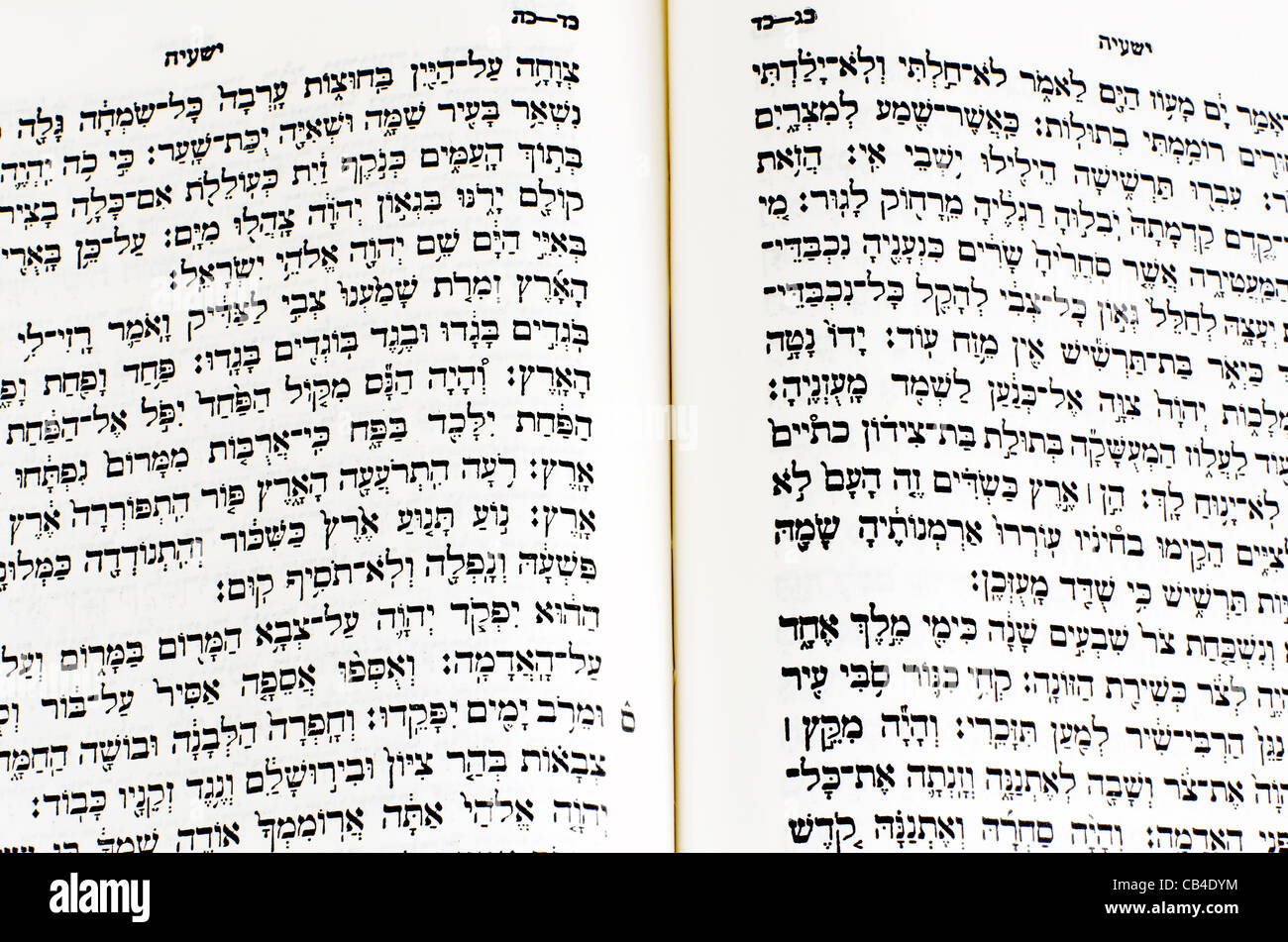 Genesis Hebräisch