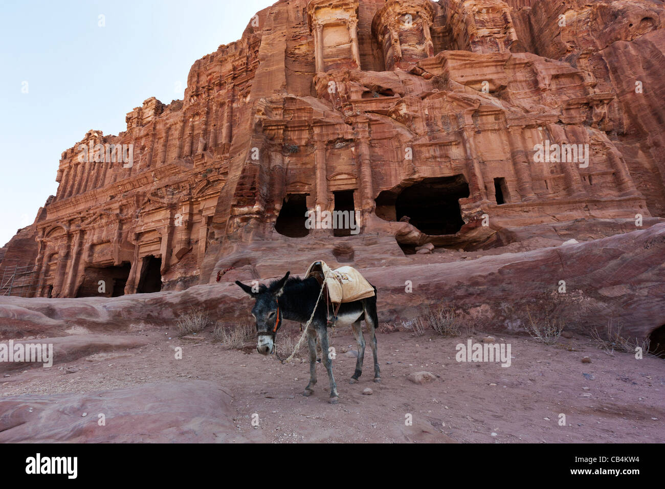 A donkey in front of the shaded Royal Tombs at the ancient city of Petra in Jordan Stock Photo