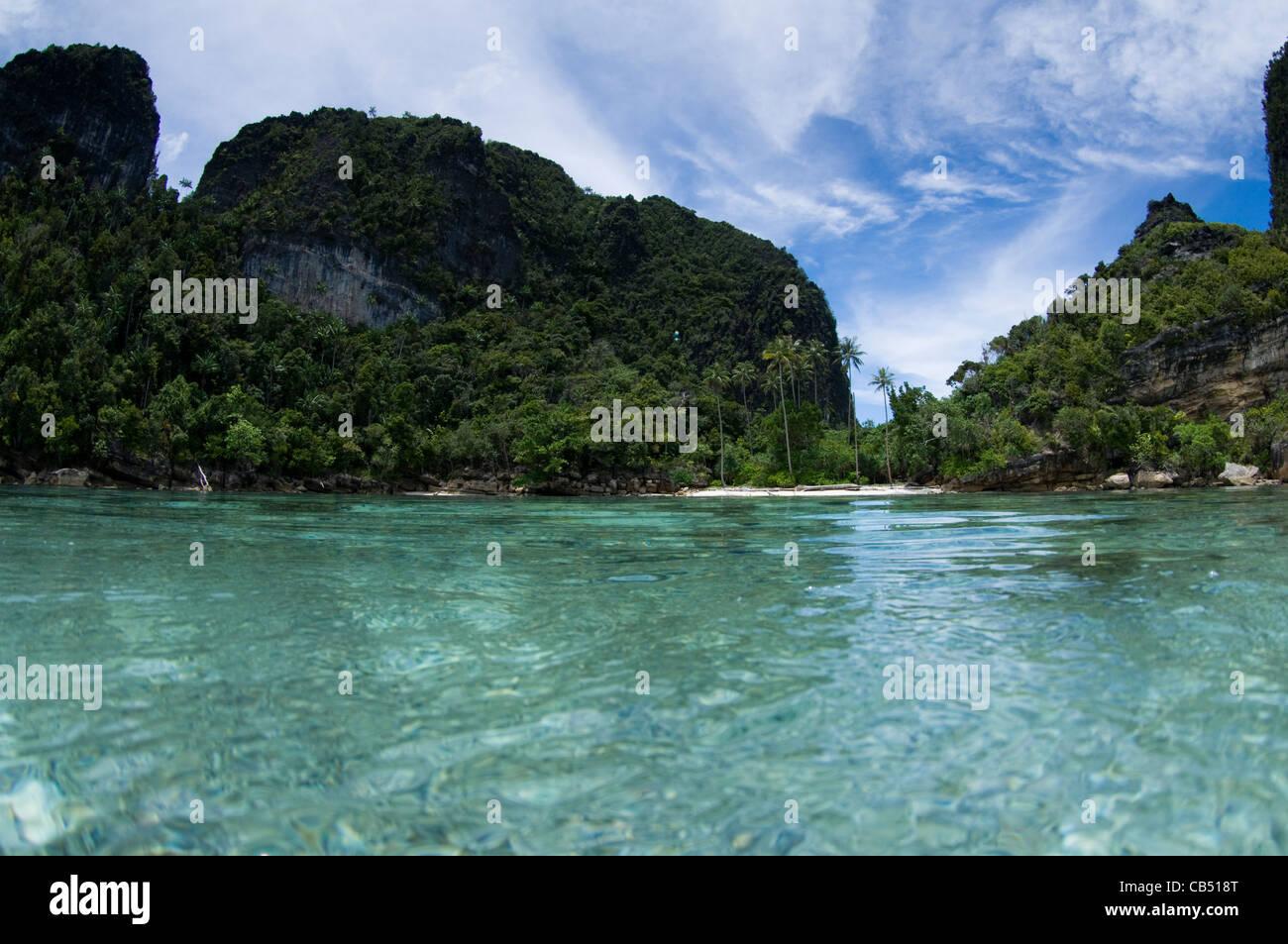 Split level photo, Misool area, Raja Ampat, West Papua, Indonesia, Pacific Ocean - Stock Image