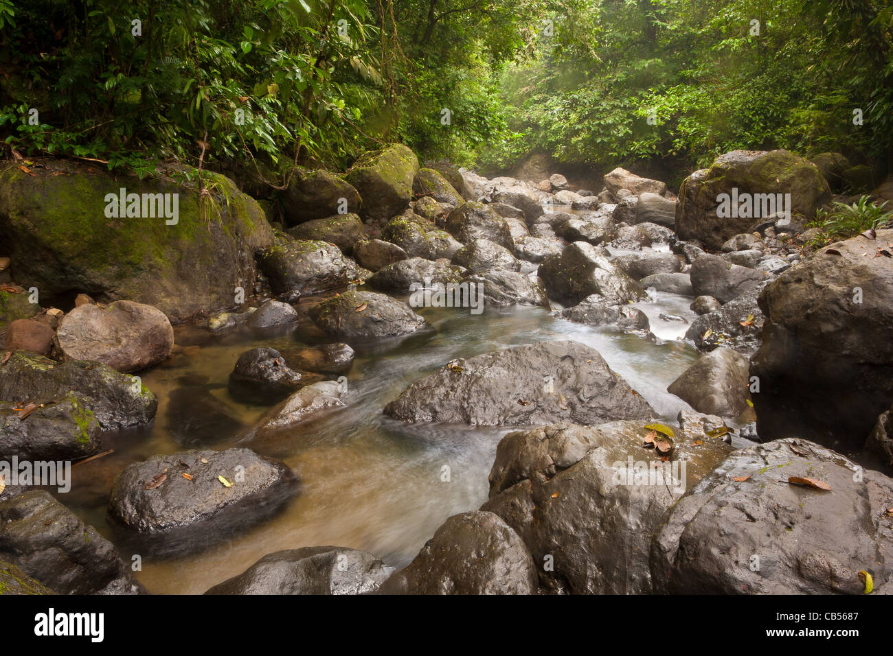 Rocky river beside the old overgrown Camino Real trail in Portobelo national park, Republic of Panama. - Stock Image