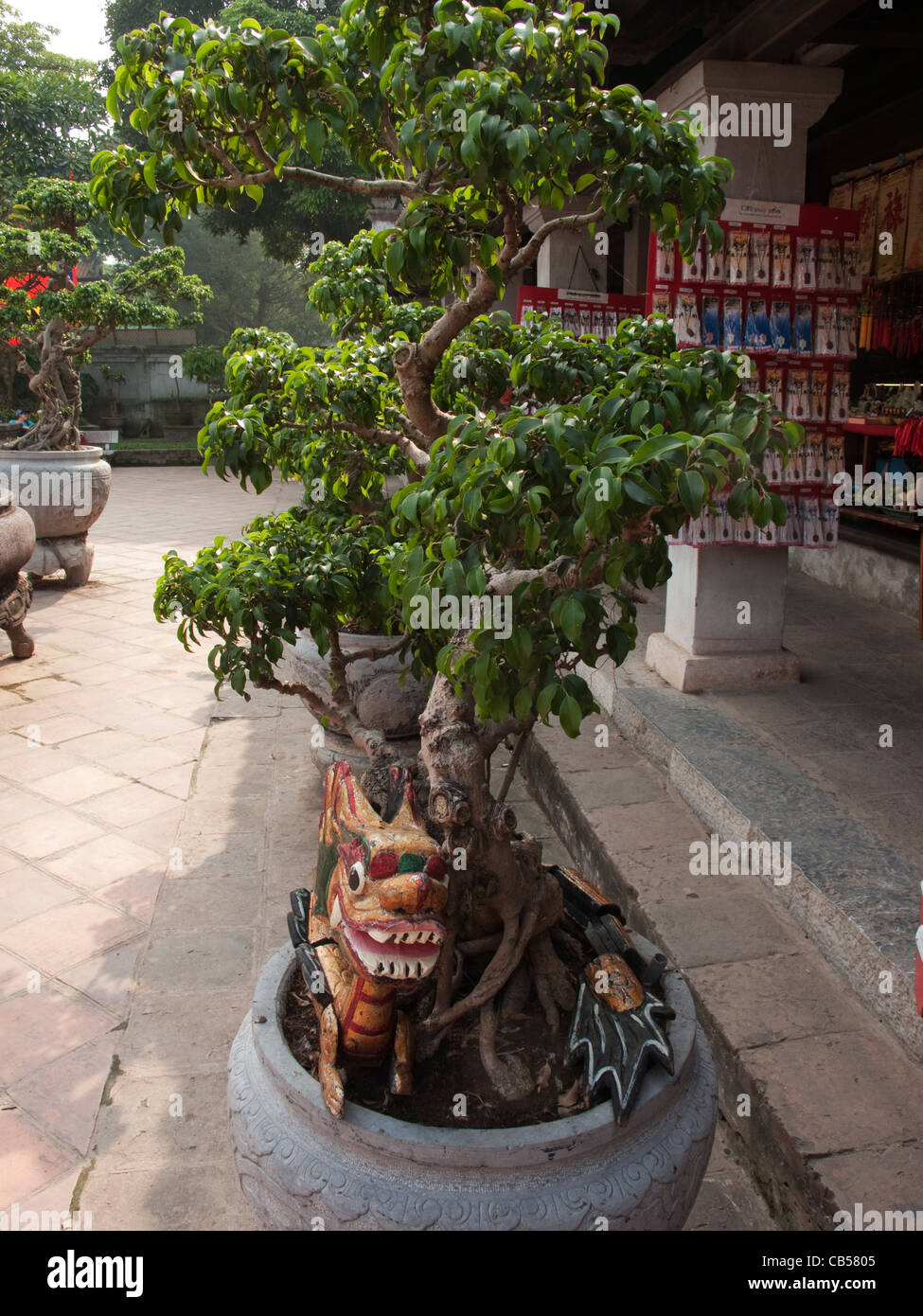 Potted Bonsai Tree At The Temple Of Literature In Hanoi With A Dragon Stock Photo Alamy