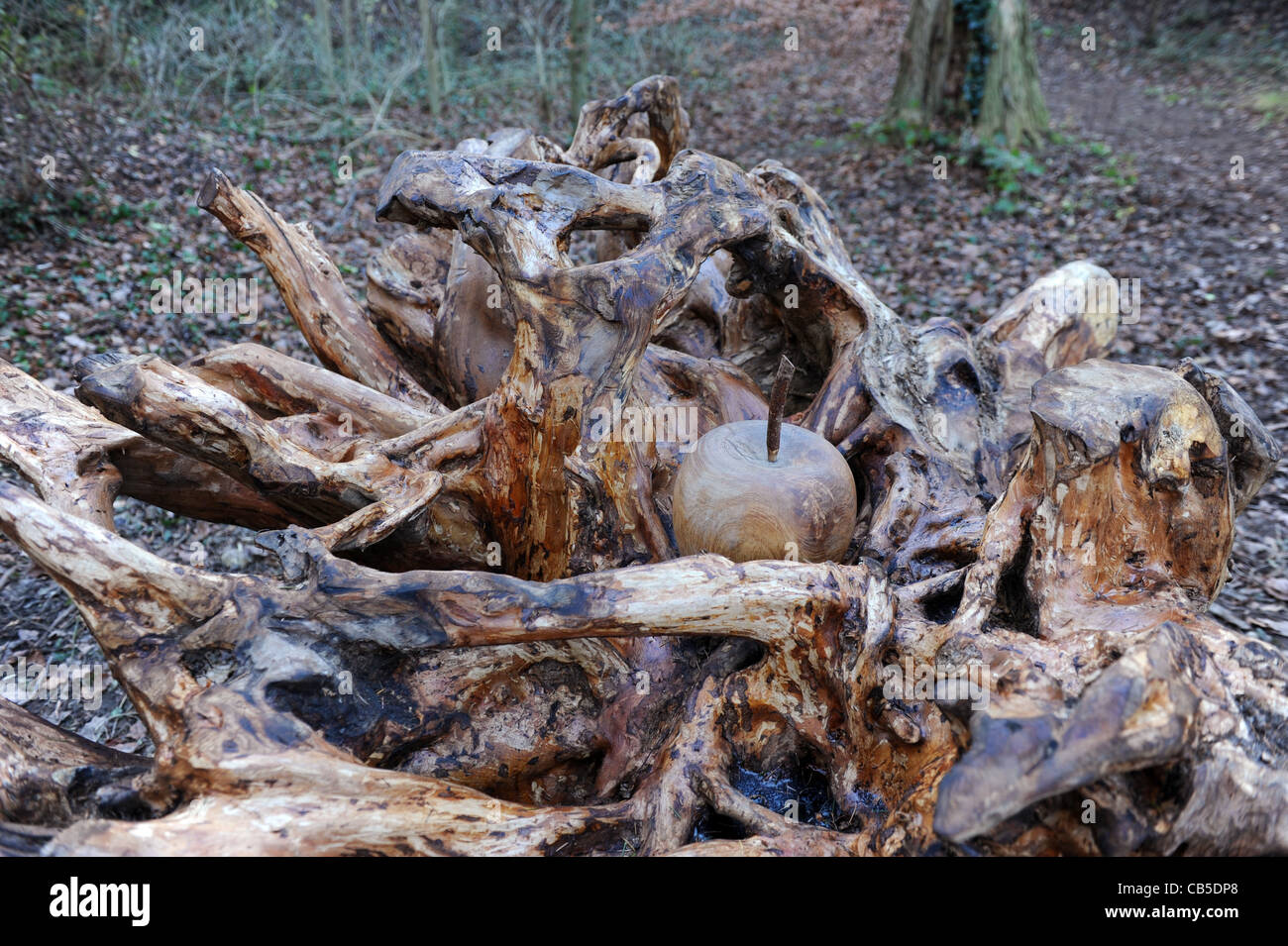 Tree root stumpery with a wood turned apple - Stock Image