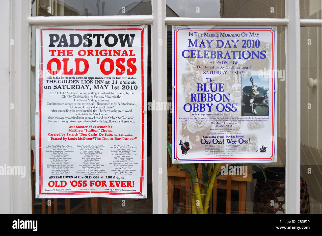 Posters in shop window advertising the annual ' obby oss ' may day celebrations in Padstow, Cornwall, UK - Stock Image