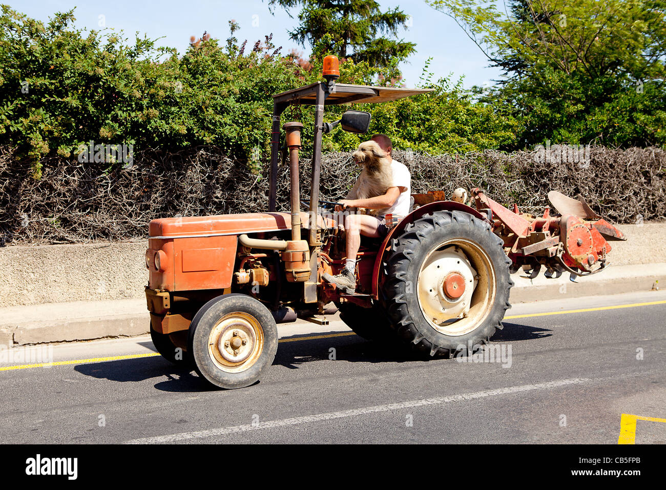 funny photo man is driving his tractor with dog on seat CB5FPB - Download funny tractor photos