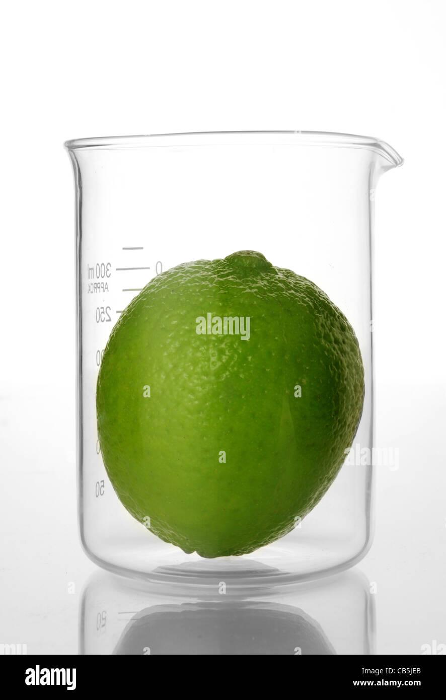 lime fruit in laboratory beaker - Stock Image