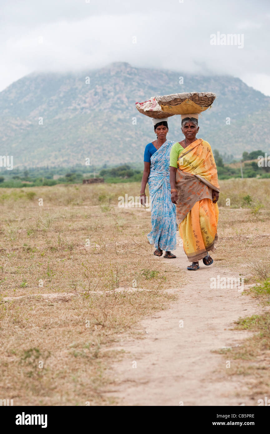 Indian women walking in the countryside carrying goods in baskets on their heads, going to work. Andhra Pradesh, - Stock Image
