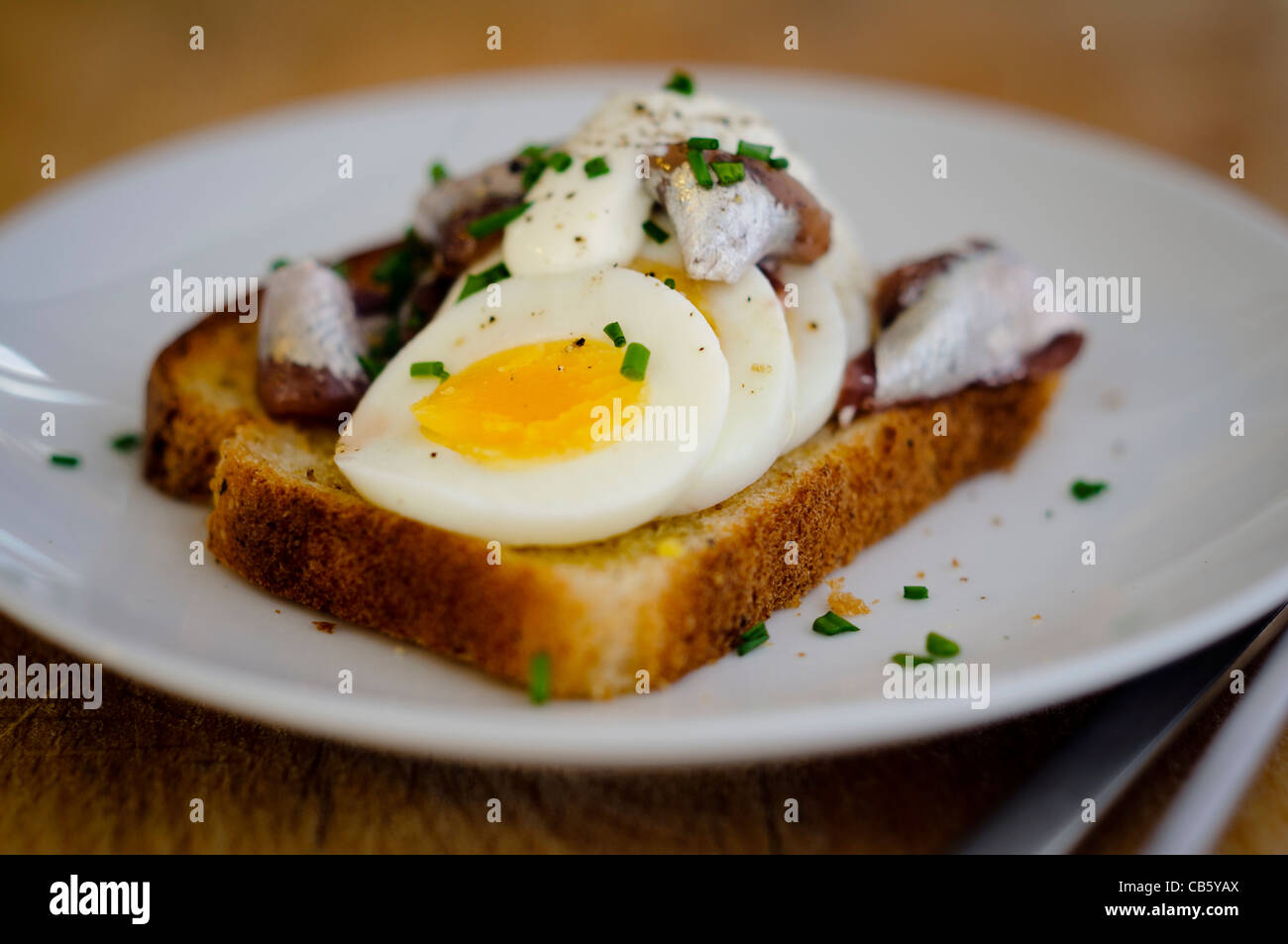 A Swedish classic open faced sandwich with sliced, hardboiled egg, topped with canned Swedish ansjovis (pickled - Stock Image