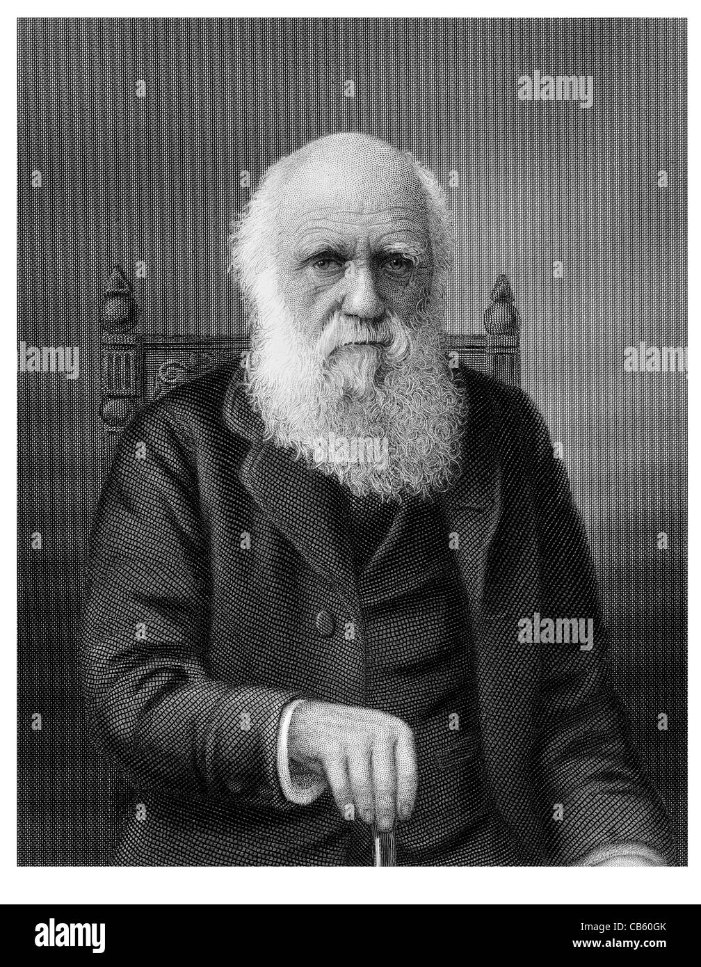 Charles Robert Darwin 1809 1882 English naturalist scientific theory  evolution natural selection On the Origin of Species 21bce14e754