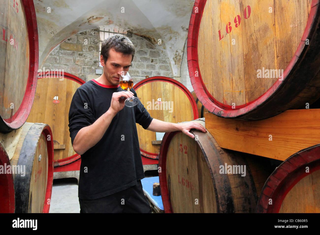 Winemaster tasting Brandy from Oak Barrels in the cellars of Cremisan Winery in Beit Jala near Bethlehem, Palestine Stock Photo