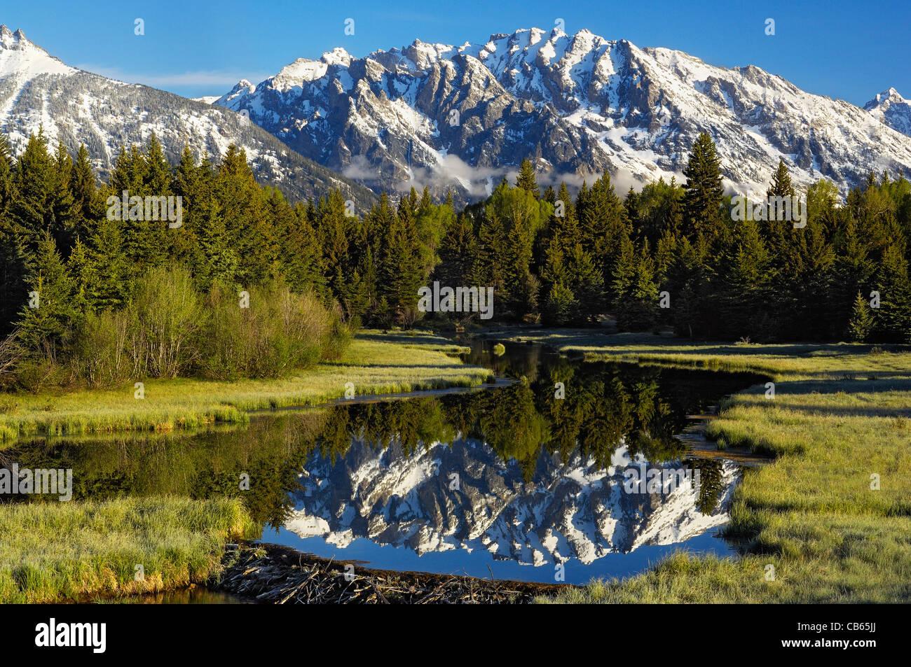 Teton Reflections - Stock Image