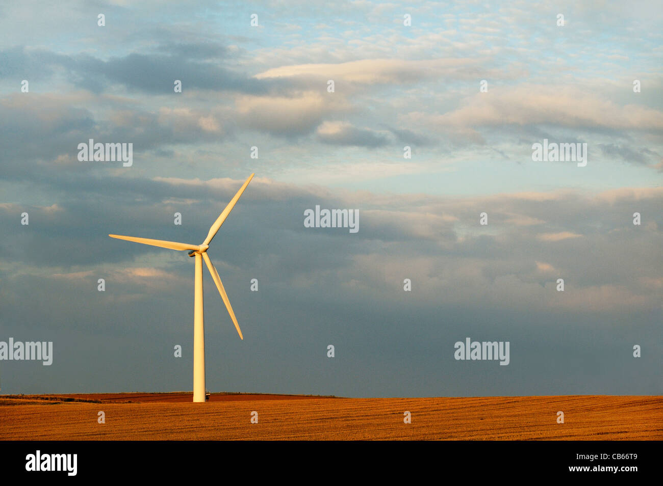 Wind farm turbine on rich crop soil farm land at Easington, Holderness, East Yorkshire, on east coast of England, - Stock Image