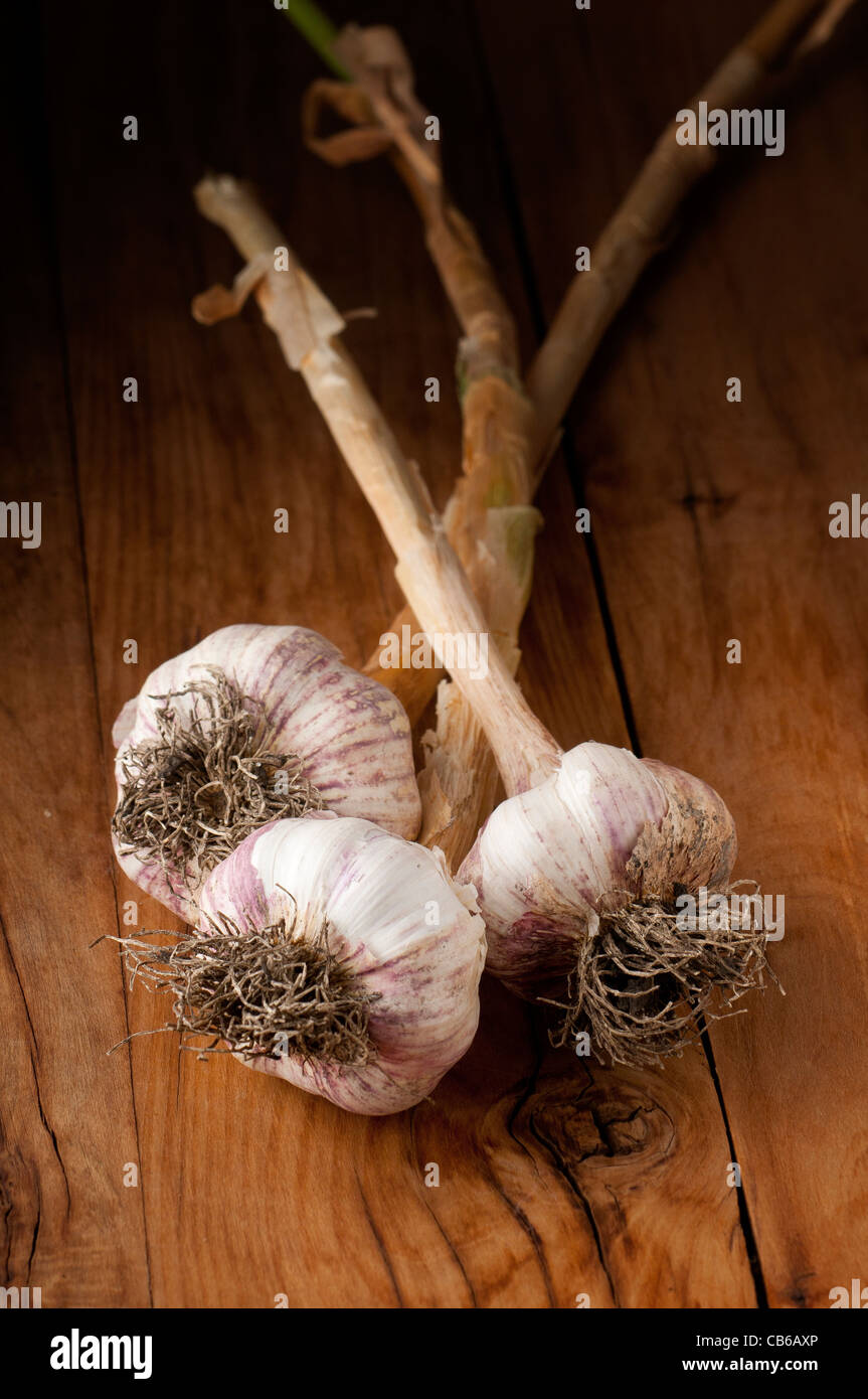 natural garlic dry on wooden background - Stock Image