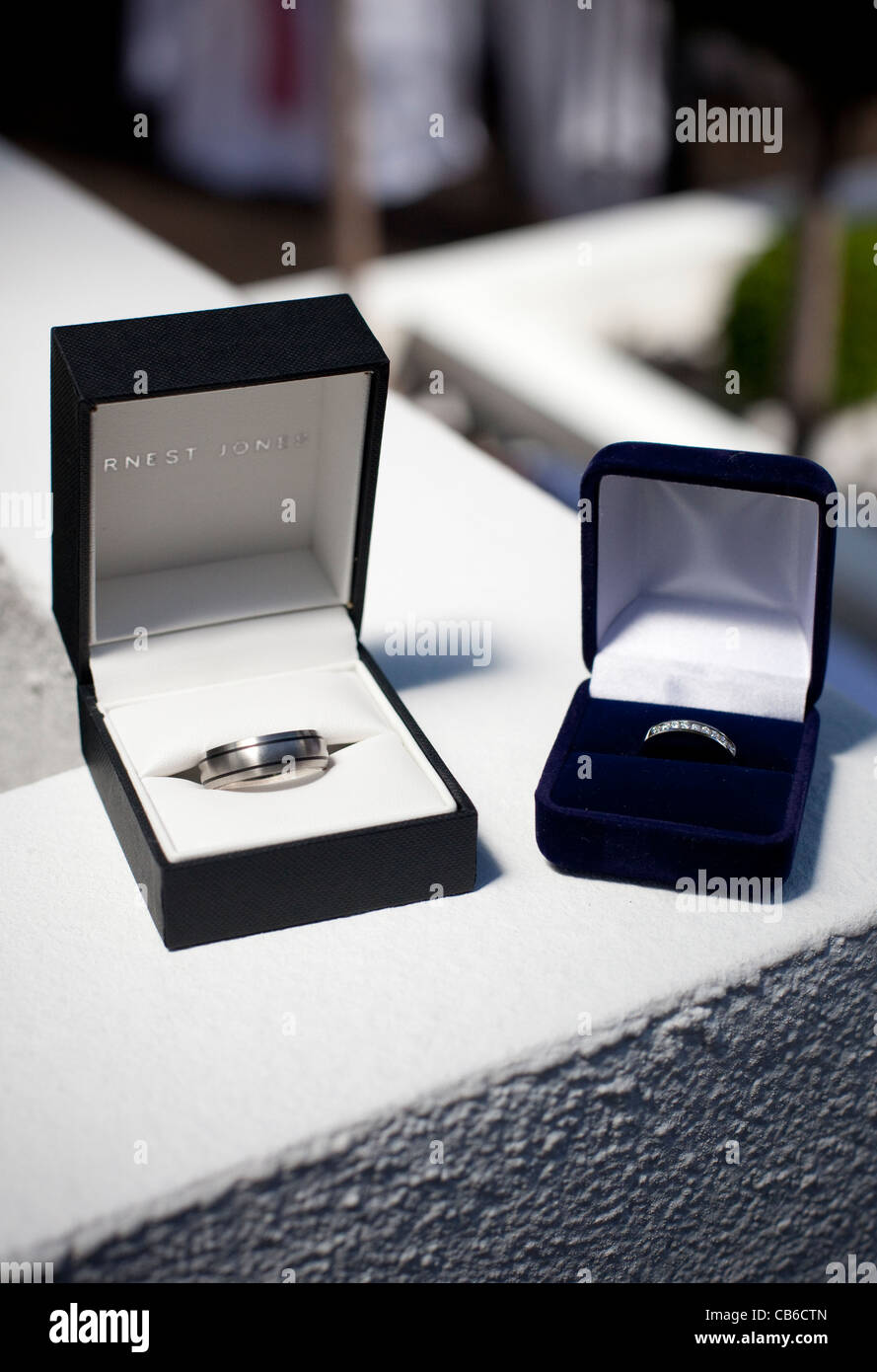 Modern Aj Lee Wedding Ring Collection The Wedding Ideas