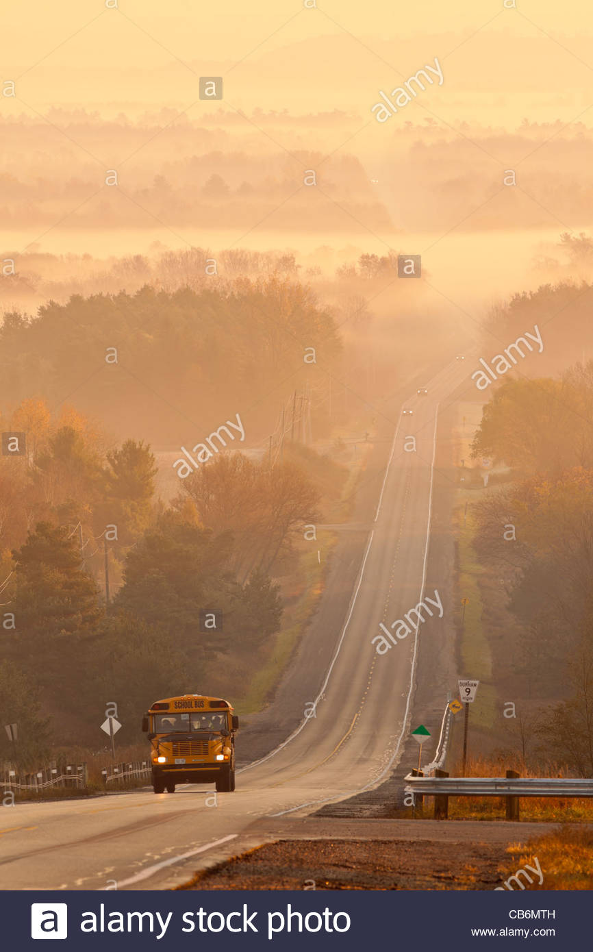 School bus and rolling farmland early on a autumn morning in a radiation type fog in Durham region in Ontario Canada - Stock Image