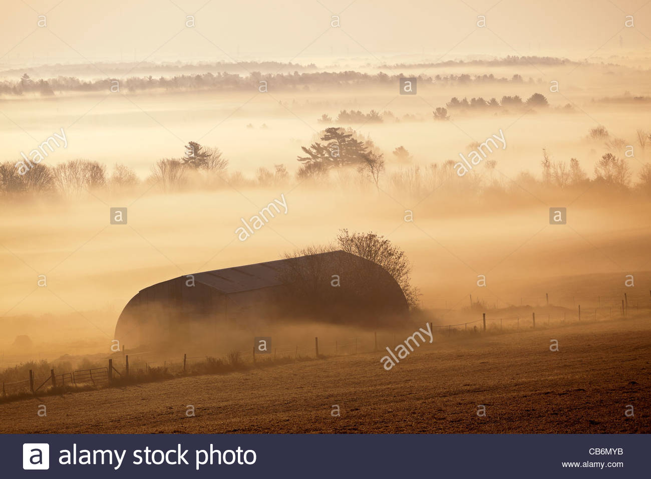 Barn on the farm early on a autumn morning in a radiation type fog in Durham region in Ontario Canada - Stock Image