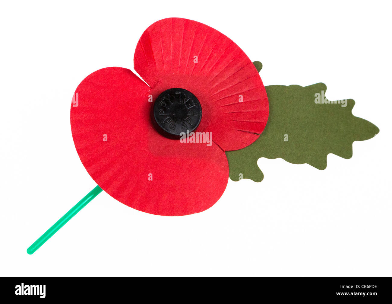 Remembrance day poppy on white cut out UK - Stock Image